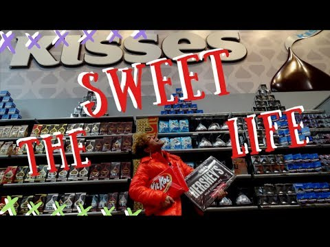 The Sweet Life | Chocolate World, Zoo America, Perfectly Baking a Cake! | Vlog 5