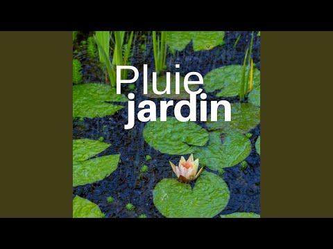 Pluie Jardin