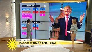 Jämt inför mellanårsvalet i USA – viktigt val för Trump - Nyhetsmorgon (TV4)