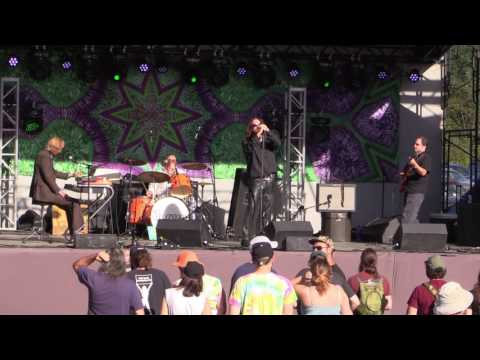 The Doors Tribute Band Riders on the Storm at Wormtown 2016 09 16
