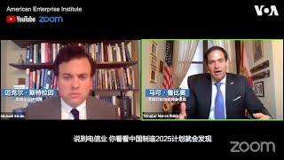 参议员鲁比奥:中国的产业受到操纵 美国不能仅看短期效益