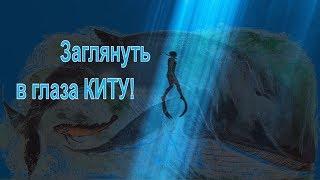 Цивилизация Китов и Дельфинов - Хранители Мудрости . Регрессия.Любовь Новикова