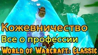 Кожевничество. Все о профессии в World of Warcraft: Classic