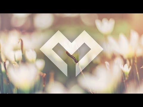 [LYRICS] Miro - The Garden of Memories (ft. Noctilucent)