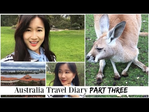 Australia! Perth, Caversham Wildlife, Kings Park | Travel Diary [Pt. 3]