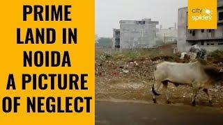Noida Sec 44 prime location turns into dumpyard
