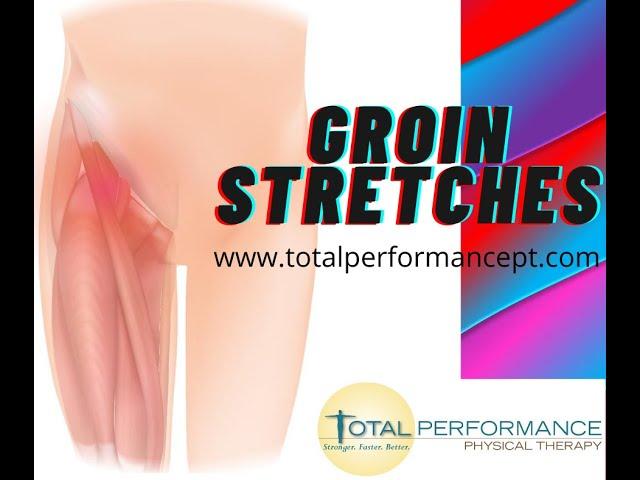 Groin Stretches