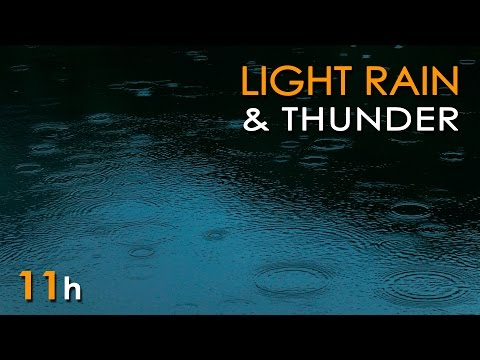 Light Rain & Thunder -Relaxing Ambient Nature Sounds - 11 Hours - Relax/ Sleep/ Study/ Meditate