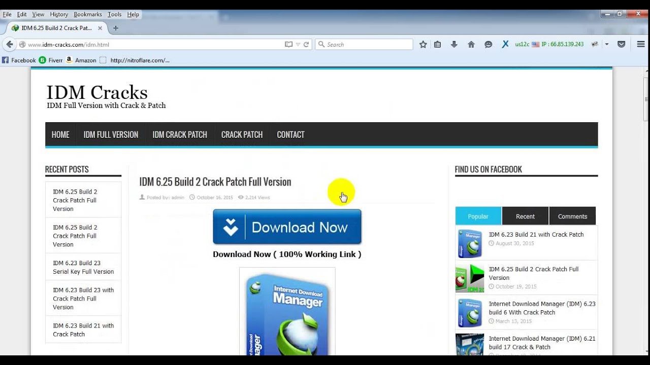 idm 6.25 build 21 crack patch full version free download