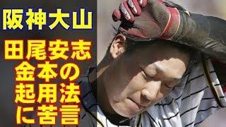 阪神タイガース大山悠輔に金本監督怒り爆発?田尾安志氏も起用法に疑問を投げかける。