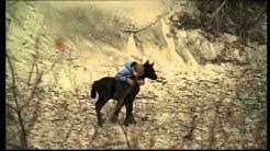 Die Pferde des Himmels (Deutscher Trailer)