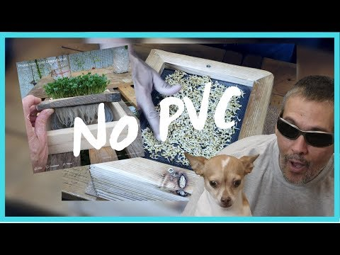 No PVC / Easy DIY Hydroponics - how to make a wood microgreen grow box