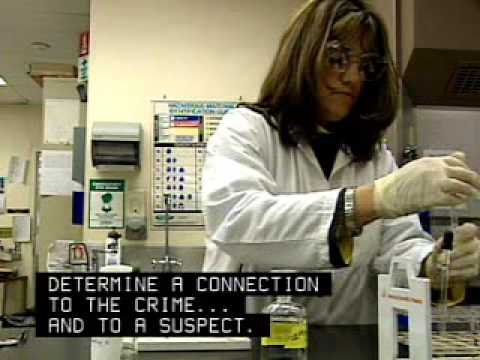 Forensic Scientist Career Overview
