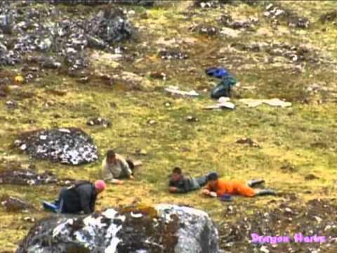 Collecting Bhutanese Wild Cordyceps
