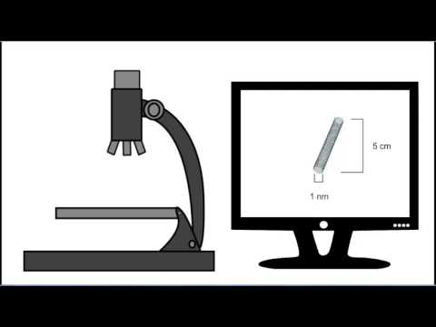 Nanotechnology Video 1: What is a nanometer?