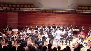 Tchaikovsky 5th Symphony - 1st movement Andante - Allegro con anima - Orquesta Metropolitana Batuta