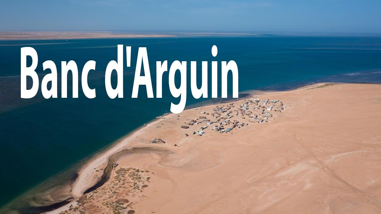 Le Parc National Du Banc Darguin Mauritanie Hd Youtube
