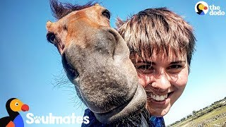 Horse And Her Mom Saved Each Other's Lives | The Dodo Soulmates