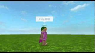 Lebron James roblox vine ( st patricks special )