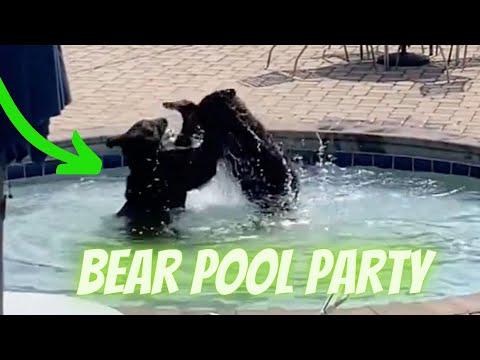 Black-Bears-Pool-Party-in-Chalet-Village-Gatlinburg-TN-Black-Bears-take-over-JROTC-swimming-pool