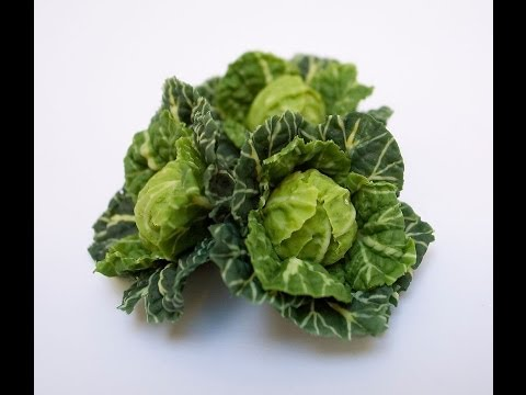 Making Miniature Cabbages in 12th Scale - Angie Scarr Fruit & Vegetables DVD