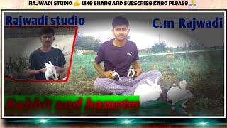Rabbit🐰 and hamster🐹 farm enjoy day with    c.m. Rajwadi/ Rajwadi studio