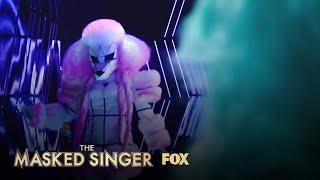 Meet The Contestants   Season 1   THE MASKED SINGER