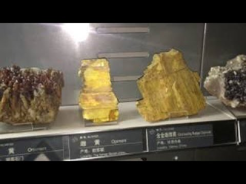 Geological Museum of China Beijing China (2 last)