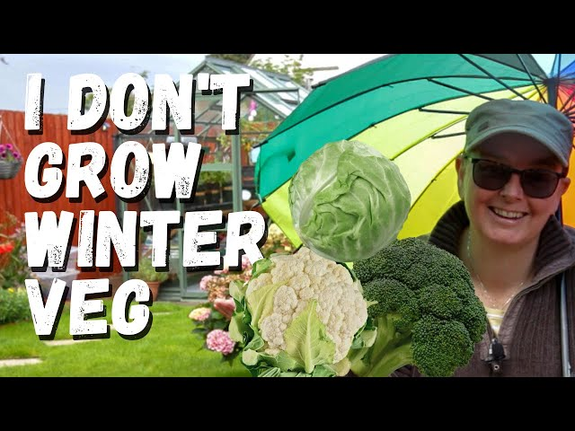 I don't grow winter veg
