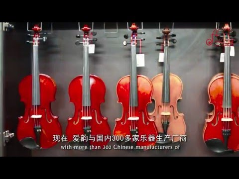 Aileen Music Profile Professional Musical Instruments Supplier from China