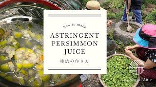 柿渋の作り方 How to make astringent juice of persimmon (kakishibu)
