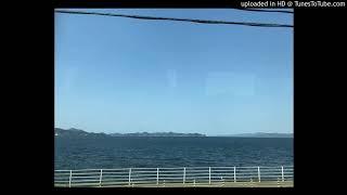 佐野元春 - 約束の橋