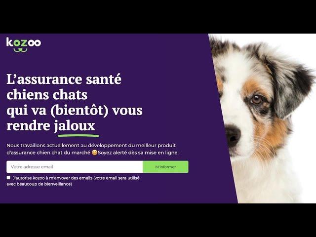 Kozoo Assurance webinaire i4Animal