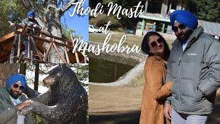 Beautiful Journey of Mashobra Shimla|Craignano|Best Picture Perfect Places Near Shimla