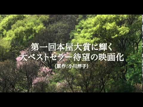 映画『永い言い訳』で本木雅弘と21年ぶりに共演!女優・深津絵里のおすすめ出演作品