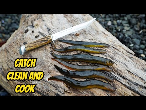 EEL Catch, Clean, and COOK!!!
