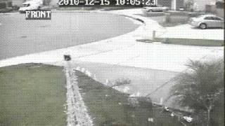 husky dog stolen caught on video murrieta huskies outside my gate