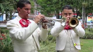 MARIACHI MAZATLAN-La Venia Bendita-Jorge Londoño-CEL 3144138430