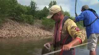 Asian carp processing plant in kentucky for Lake hefner fishing report