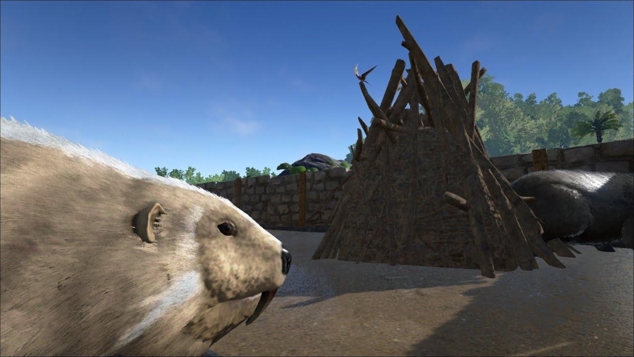 ARK: Survival Evolved - BEAVER ARMY & BEAVER DAM! S3E19 ...   Ark Beaver Dam