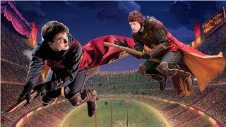Should Quidditch Be Banned?