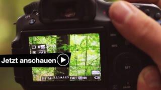 📷 Kamera Einfach die Belichtung einstellen💡 Benjamin Jaworskyj fotografieren lernen