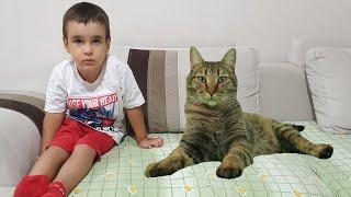 Buğra Sevimli Bir Kedi'ye Dönüştü. Eğlenceli Çocuk Videosu
