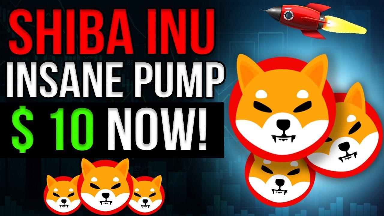 SHIB HOLDERS GET READY: INSANE PRICE INCREASE -  NOW! Shiba Inu Price Prediction & Shib News