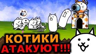 КОТИКИ ЗАХВАТЫВАЮТ МИР!!! - БОЕВЫЕ КОТЫ