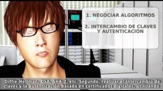 Lección 9: Introducción al protocolo SSL (intypedia)