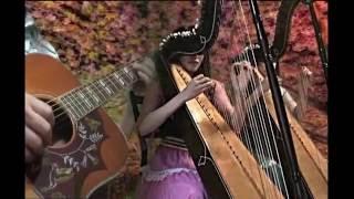 arpa acoustic guitar.