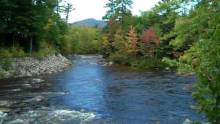 Autumn in NH - Over the Rivers and Through the Woods
