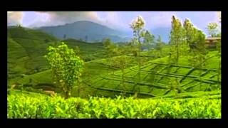 sri lanka wonder of asia 2014 - tatbooking.com