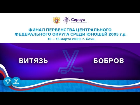Хоккейный матч. 10.03.20. «Витязь» – «Бобров»
